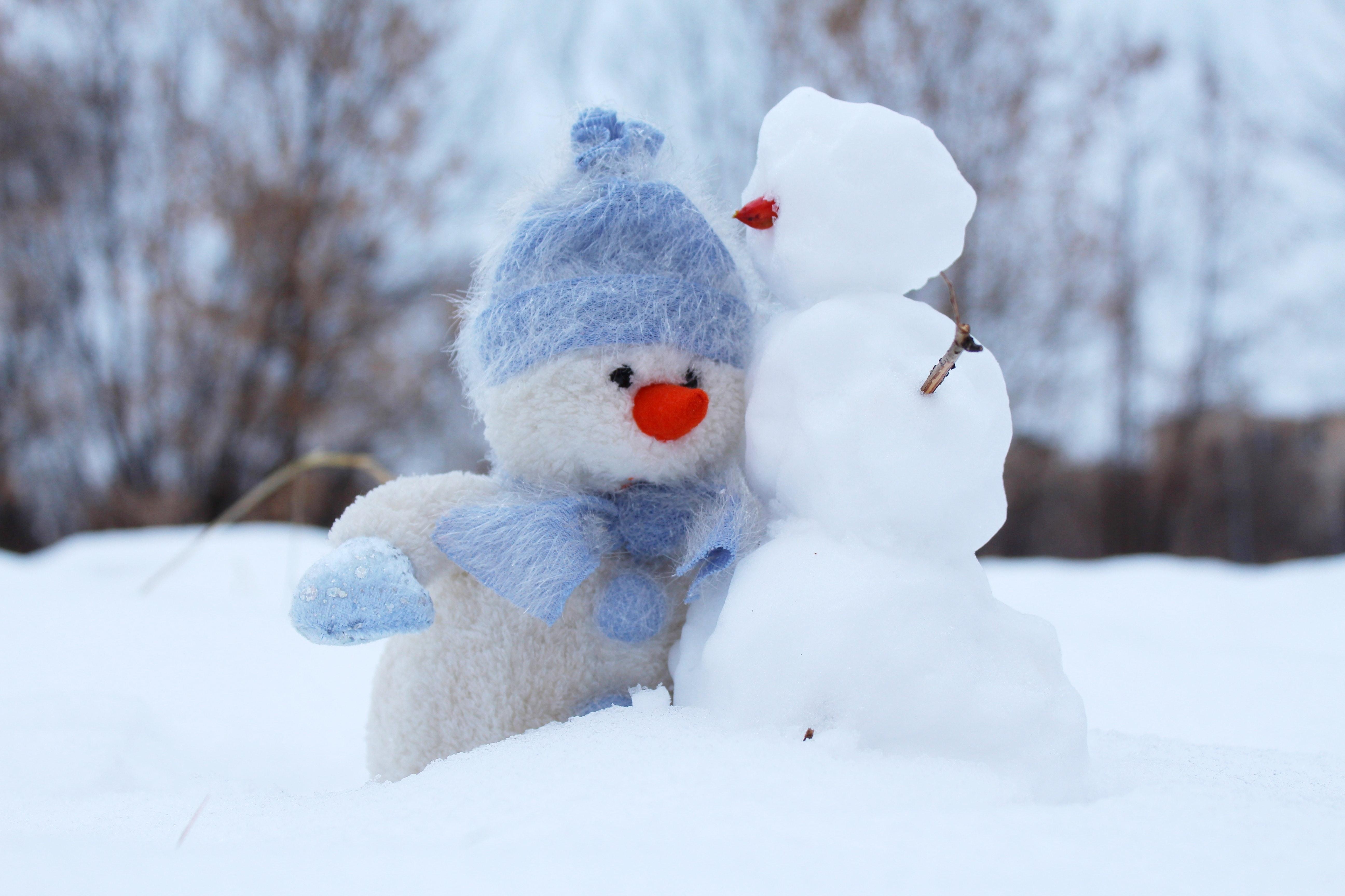 GI-prieteni-bune-congelati